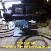 Phân phối thảm trải dưới sofa xuất xứ Đức : 1,6m x 2,3m, 2m x 2,9m.