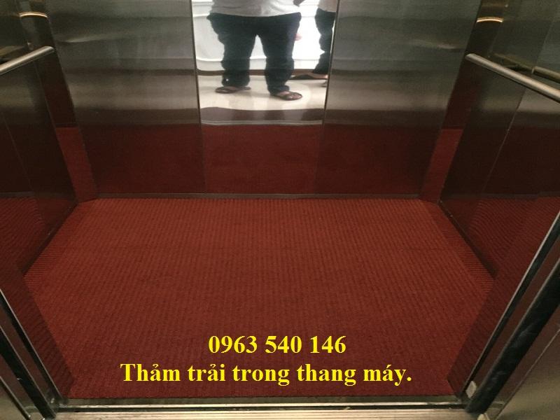 Thảm lau chân bên trong thang máy màu đỏ sang trọng.